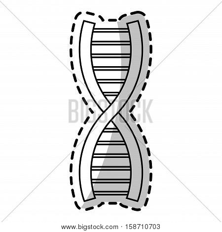 Dna icon. Structure chromosome science and molecule theme. Isolated design. Vector illustration