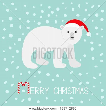 Arctic polar bear cub. Red Santa hat. Cute cartoon baby character. Merry Christmas greeting card. Candy cane stick text. Flat design. Blue snow flake background. Vector illustration