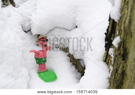Christmas vacation or winter fun over the holidays greeting card with copy space. Cute pink flamingo snow bird snowboards down a wintry slope with beach gear sun glasses and safari hat for a winter get away holiday or an escape to tropical island. Snow Bi