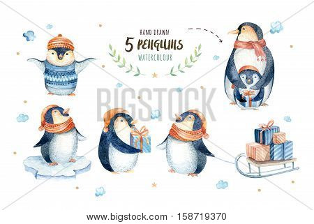 Merry christmas snowflakes and penguins. Hand drawn illustration for your design. xmas penguin design elements isolated on white.