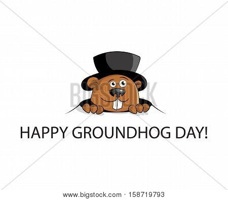 Happy groundhog day. marmot in hat look from hole. Flat design. Vector illustration.
