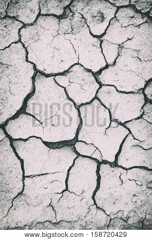 dried soil with multiple cracks black and white toning