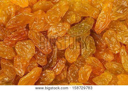 Raisins closeup background. Heap of shiny golden yellow raisins dried fruit. Top view.