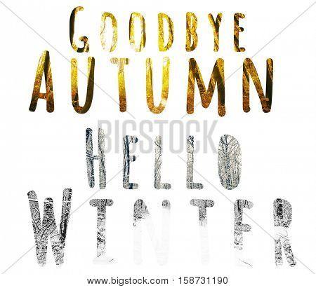 Goodbye autumn hello winter