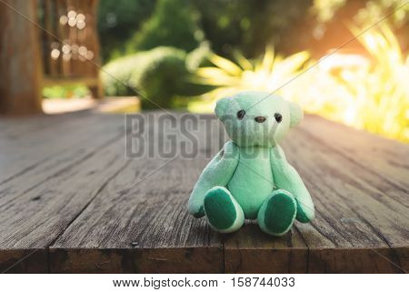 Green teddy bear toy alone on wood floor with blurred green background