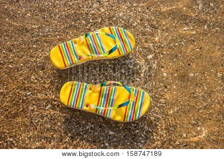 Bright-colored flip flops. Footwear on water background. Sense the warmth of sea. Holidays at the tropical island.