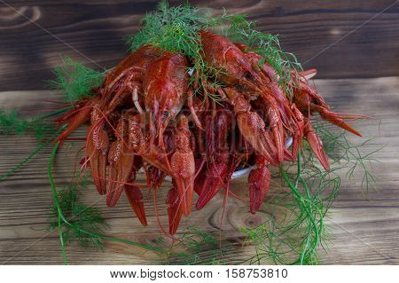 Plate Of Red Boiled Crayfishes With Fennel On Wooden Background