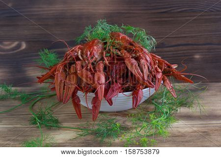 Plate Of Red Clawfishes With Fennel On Wooden Background