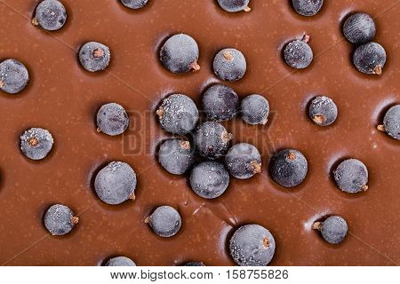 Delicious chocolate cake with blueberries closeup. Macro. Photo can be used as a whole background.