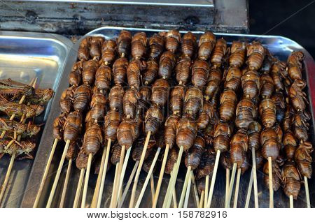 Chinese street food in the Hutongs of Beijing Wangfujing Street roasted silkworm pupae