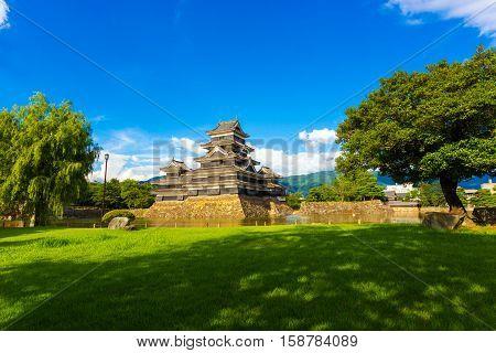 Matsumoto Castle Trees Park Lawn Blue Sky