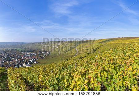 Vineyards in autumn with village Mundelsheim at the river Neckar, Germany