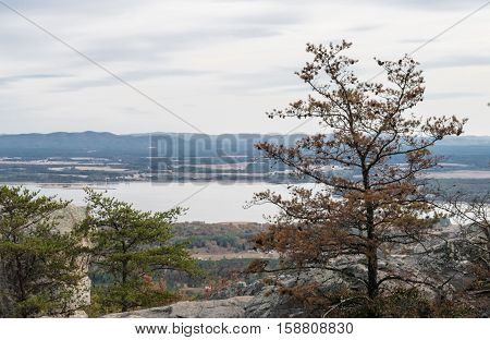 Scenic view of mountains and lake with large tree in foreground