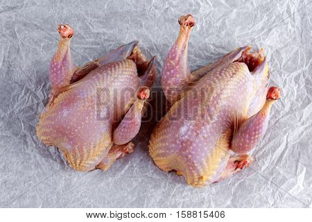 Ready to cook raw seasoned partridges on crumpled paper