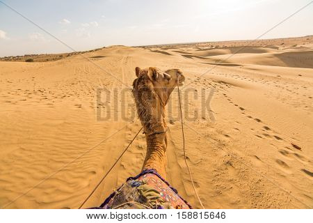 Camel rider view in Thar desert, Rajasthan, India