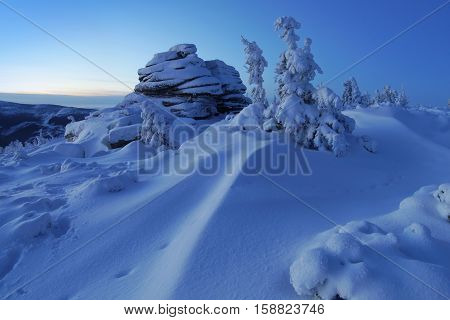 Winter trees in mountains covered with fresh snow before sunrise