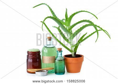 Aloe Plant In Flowerpot, Organic Aloe Vera Essence, Cream Or Salve And Other Products On White.