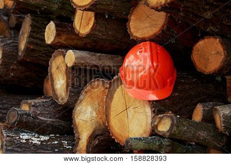 Orange protective helmet lying on wooden logs