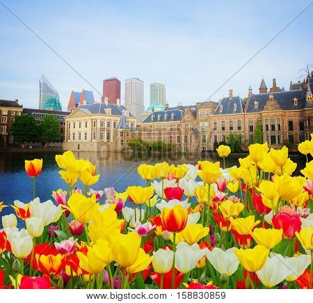 city center of Den Haag - old and new at spring, Netherlands