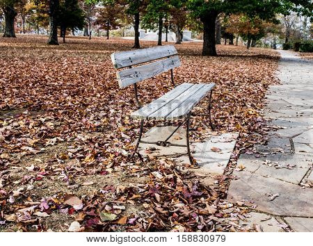Park bench in autumn with fallen leaves