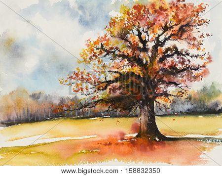 Picture of oak with autum leaves.Picture created with watercolors.