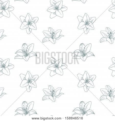 Silver and white seamless vector pattern with lily.  Floral silver grey background with lily.