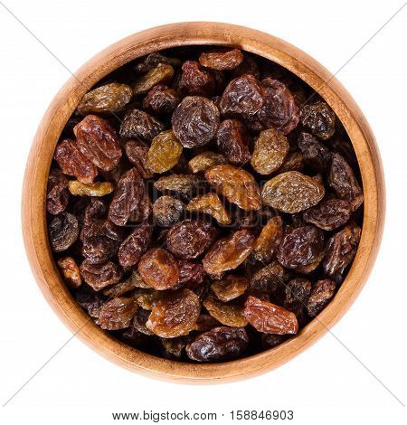 Raisins in wooden bowl made of dark brown colored large grapes. Edible dried seedless fruits, organic and raw. Isolated macro food photo close up from above on white background.