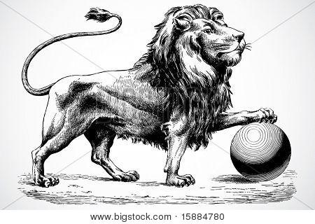 Vector Lion Ornament