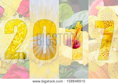 Happy New Year 2017 In Flower Theme