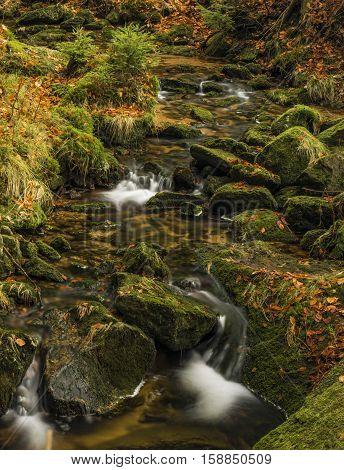 Creek Kamenice in Jizerske hory mountains in autumn time