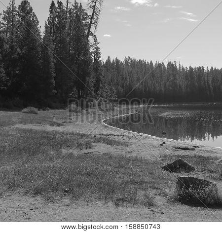 The shore of o high mountain lake in Oregon.