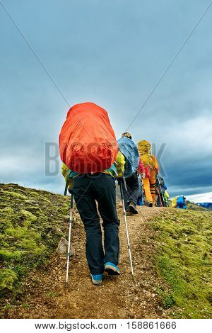 hikers with backpacks on the trail in the mountains. Trek in National Park Landmannalaugar, Iceland