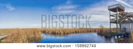 Panoramic view of Point Pelee national park boardwalk and lookout in the fall, Ontario, Canada