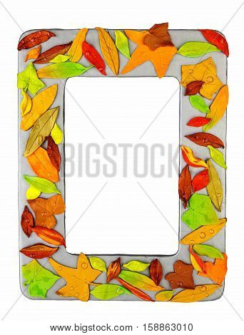 Photo frame made from polymer clay handmade crafted autumn leaves