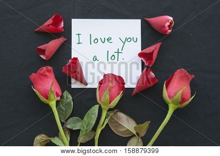 i love you a lot messages card with red rose on background black