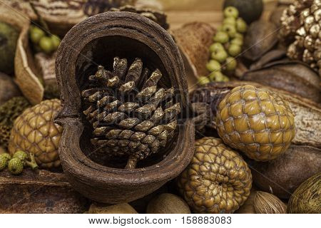 Traditional seasonal Christmas decorations. Natural woodland items including a gilded pine cone nuts and berries as used in potpourri and table decorations.