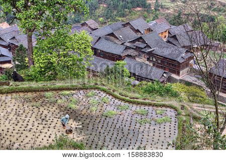 Jilun Dong Village Guizhou Province China - April 9 2010: a peasant village near Zhaoxing day springtime southwest China.