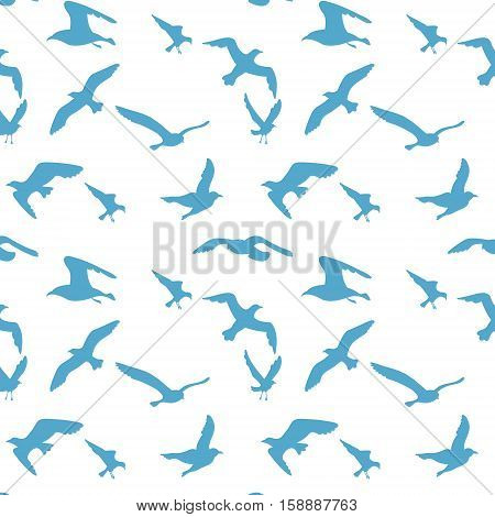 Seamless texture with flying seagulls. Pattern. Vector illustration