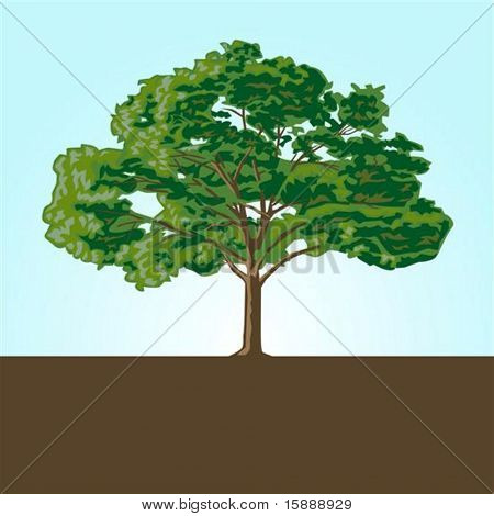 Illustrated tree, easy to change colors and edit to any size.