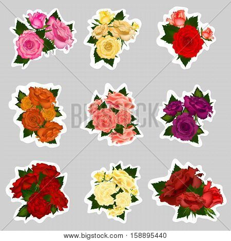 Collection of vector sticker high detailed realistic rose flowers on white background. Vector illustration.