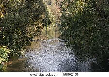 Beautiful view on the calm river Wupper Germany NRW.