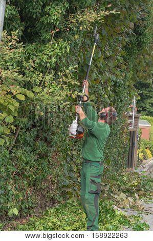 Cutting a hedge with a hedge trimmer motor.