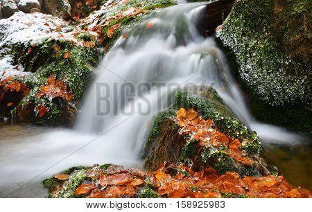 Winter creek in the national park Sumava,Czech Republic.