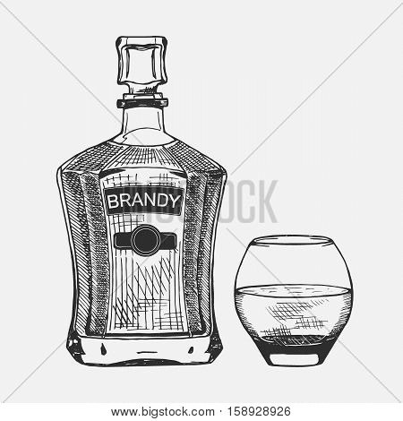 Creative sketch of brandy composition. Vector illustration. Hand drawing brandy set used for advertising brandy premium quality, beverage in restaurant or pub menu, for logo design.