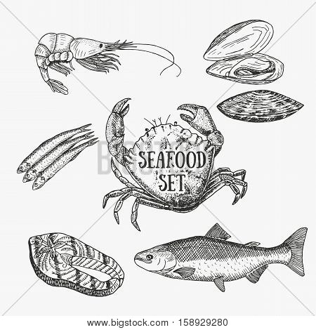 Creative seafood set. Vector illustration. Sketch include prawn, crab, oyster, salmon, salmon steak and sprat. Graphic objects used for advertising seafood, fish market or restaurant menu.