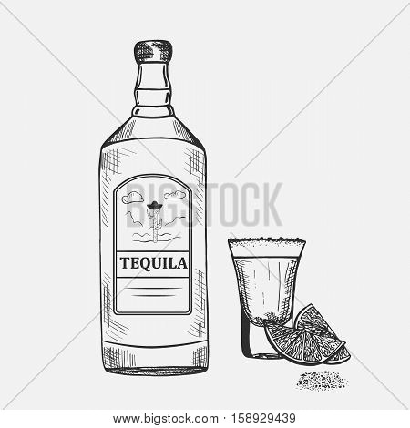 Hand drawn composition with tequila. Vector illustration. Set of tequila objects used for advertising beverage in restaurant or bar menu, for alcohol markets and logo design.
