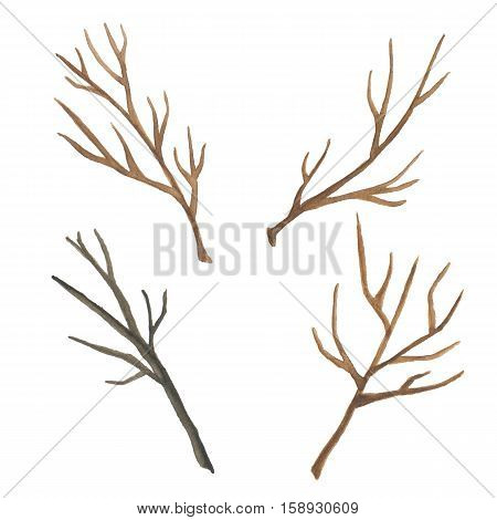 Watercolor tree branch isolated on white background.