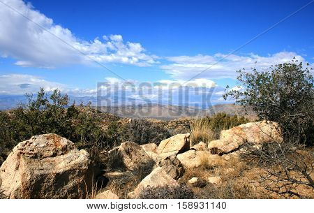 View from Inspiration Peak, Joshua Tree National Park
