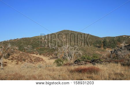 Brown hill and field beneath blue sky, California