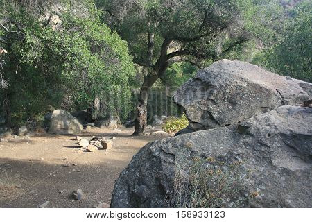 Oak trees and boulders around a trail camp, California